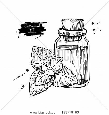 Mint essential oil bottle and peppermint leaves hand drawn vector illustration. Isolated plant drawing for Aromatherapy treatment, alternative medicine, beauty and spa, cosmetic ingredient. Great for label, poster, flyer, packaging design.