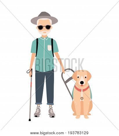 Blind man. Colorful image featuring visually impaired elderly with guide dog on white background. Flat vector cartoon illustration