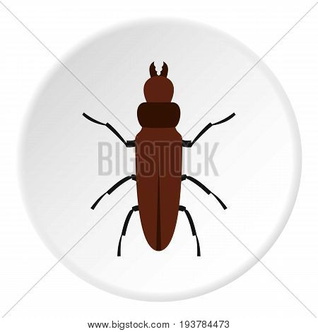 Cockroach icon in flat circle isolated vector illustration for web