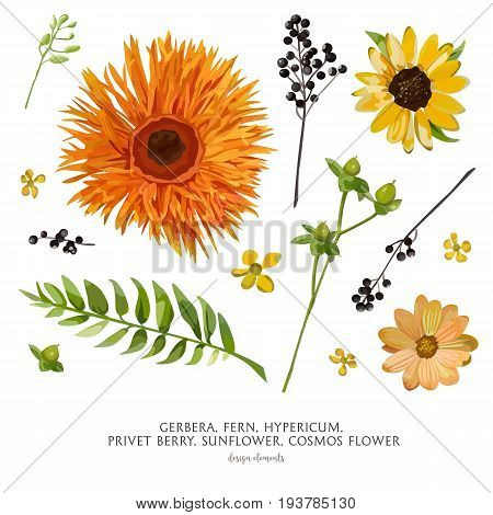 Vector flower elements set collection: Various Flowers Leaves Gerbera Dahlia Cosmos Daisy Sunflower Hypericum fern privet berry leaf. Yellow Orange Green black watercolor garden beautiful wildflowers