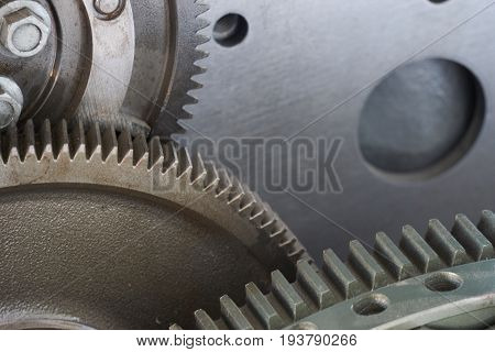 Types Of Gearings. Close Up Photo Of Cogwheel Gear Tooth