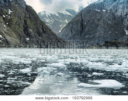 Scenic coastal landscape with steep glacially polished cliffs and floating ice at Tracy Arm Fjord, Alaska