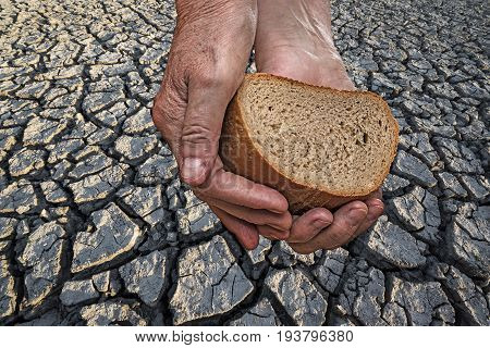 cracked dried soil - a hunger concept