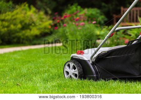 Lawn mow mower lawn mower green grass green field grass field