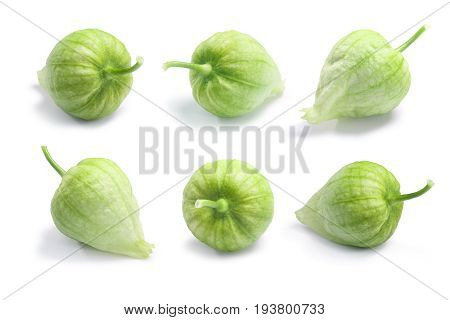 Tomatillos (physalis Philadelphica), Paths