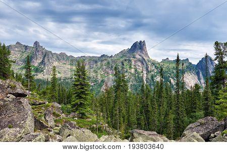 Dark Coniferous Taiga In Siberia