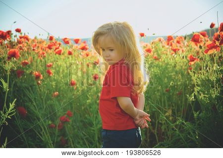 little boy. child with long blonde hair in red shirt in flower field of poppy seed with green stem on natural background summer spring childhood and happiness opium ecology and environment