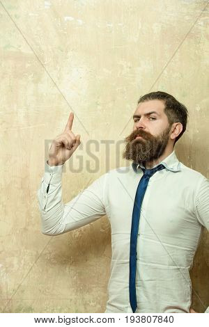 hipster or bearded man with long beard and stylish hair on serious face in tie and white shirt on textured beige background with raised finger