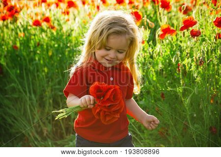 little boy or child with long blonde hair in red shirt in flower field of poppy hold bouquet on natural background summer spring childhood and happiness opium ecology and environment