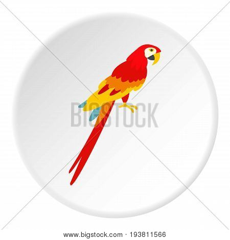 Scarlet macaws icon in flat circle isolated vector illustration for web
