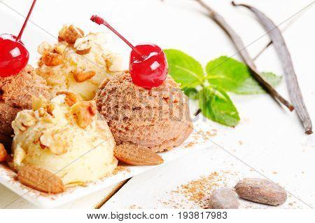 Cocoa And Vanilla Ice Cream Dessert