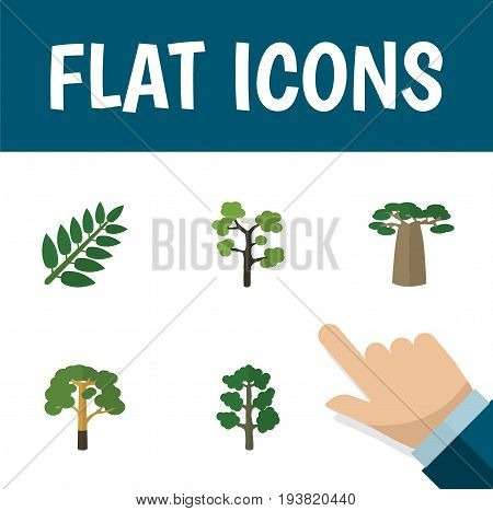 Flat Icon Natural Set Of Baobab, Garden, Forest And Other Vector Objects. Also Includes Tree, Timber, Forest Elements.