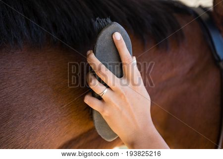 Cropped hand of woman brushing brown horse mane at ranch