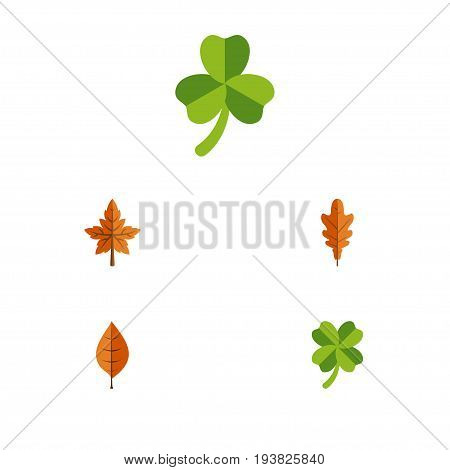 Flat Icon Leaf Set Of Alder, Leafage, Foliage And Other Vector Objects. Also Includes Leafage, Frond, Leaf Elements.