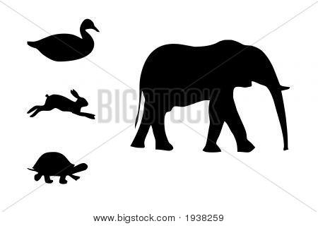 Black Animals Silhouettes