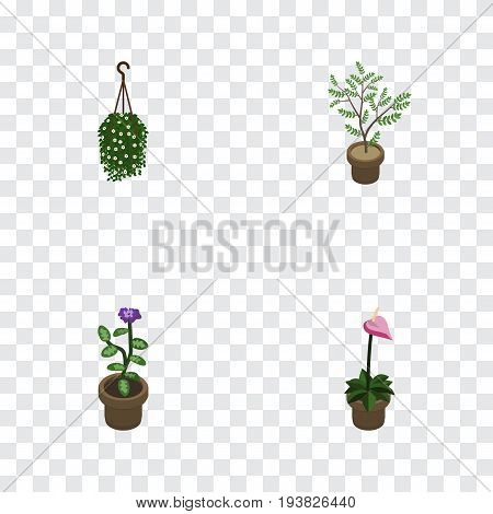 Isometric Flower Set Of Grower, Blossom, Fern And Other Vector Objects. Also Includes Pot, Houseplant, Flowerpot Elements.