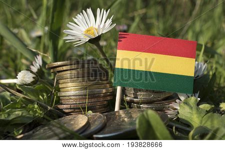 Bolivian Flag With Stack Of Money Coins With Grass And Flowers