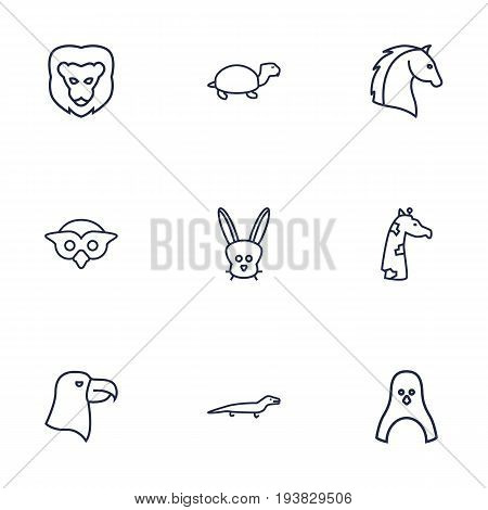 Set Of 9 Alive Outline Icons Set.Collection Of Owl, Eagle, Lion And Other Elements.