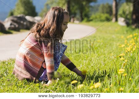 Cute girl plucking flower from field on a sunny day