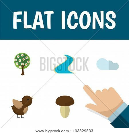 Flat Icon Bio Set Of Tributary, Champignon, Overcast And Other Vector Objects. Also Includes Cloud, Tributary, Fungi Elements.