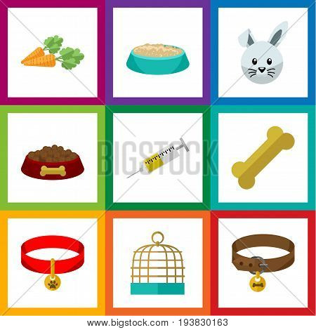 Flat Icon Animal Set Of Dog Food, Root Vegetable, Kitty Collar And Other Vector Objects. Also Includes Bone, Osseous, Bunny Elements.