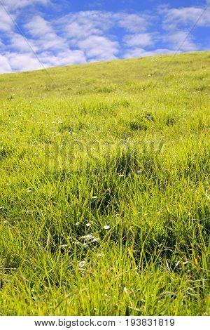 beautiful green grass of county kerry ireland