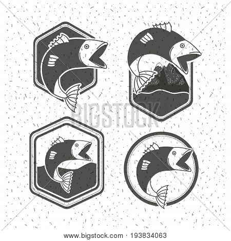 white background with sparkle of monochrome silhouette set shield emblem with types of fish vector illustration