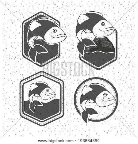 white background with sparkle of silhouette set shield emblem with types of fish vector illustration