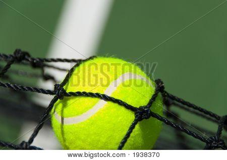 Tennis Balls In Net