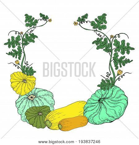 Vegetable frame isolated on a white background. Vector hand drawn illustration decorative card of ripe juicy squash pattinson for adult and children. Coloring book textile print poster design.
