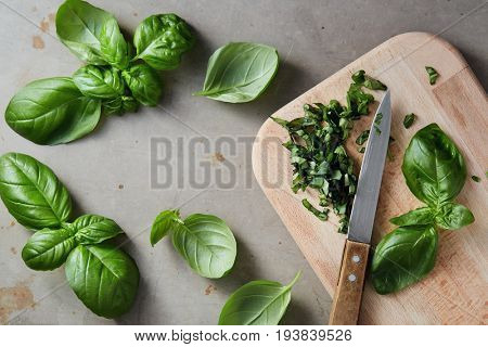 Freshly chopped basil leaves. Fresh basil on a wooden chopping board.