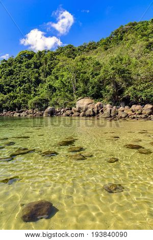 Deserted and unspoilt beach with its limpid green and transparent waters that meet the rainforest