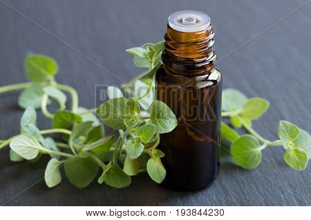 A Bottle Of Oregano Essential Oil With Fresh Oregano Leaves