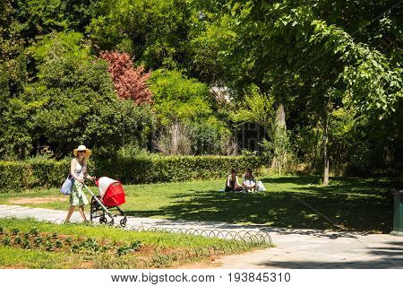 Alleys Of National Botanical Garden Of Athens, Greece