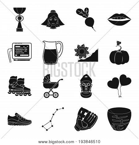 sport, wedding, birth, astronomy and other  icon in black style.sushi, farm, entertainment icons in set collection.