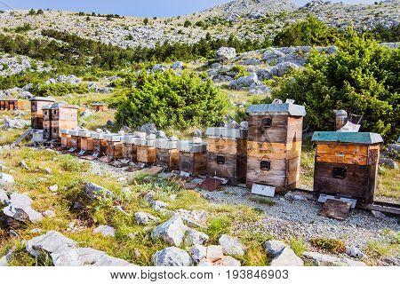 Mountain Apiary In Croatian Mountains