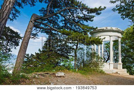 Silver Arbor Near Yalta In Crimea