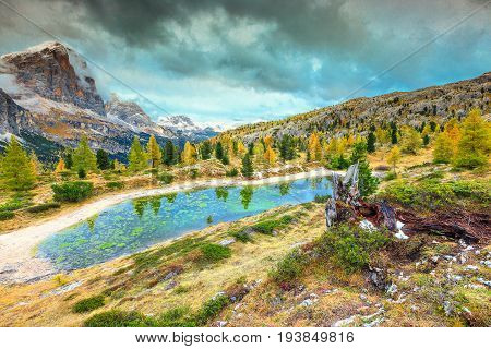 Amazing autumn landscape alpine glacier lake and yellow pine trees Limides lake with famous Tofana di Rozes peak in background Dolomites Italy Europe