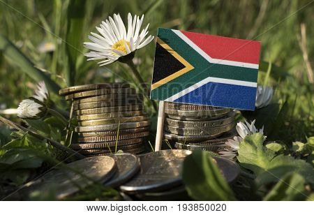 South African Flag With Stack Of Money Coins With Grass And Flowers