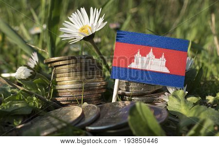 Cambodian Flag With Stack Of Money Coins With Grass And Flowers