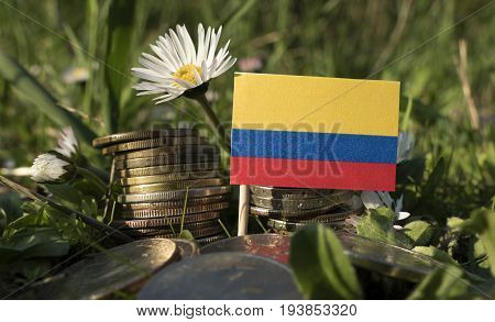 Colombian Flag With Stack Of Money Coins With Grass And Flowers