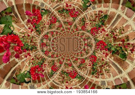Kaleidoscopic view of red flowering vines growing on a red brick wall