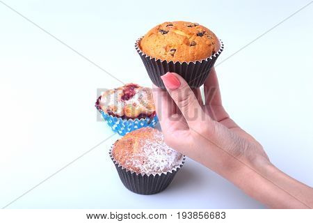 Homemade Blueberry ore chocolate muffins with powdered sugar and fresh berries in woman hand