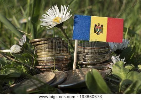Moldovan Flag With Stack Of Money Coins With Grass And Flowers