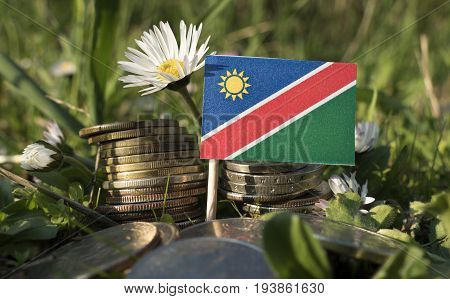 Namibian Flag With Stack Of Money Coins With Grass And Flowers