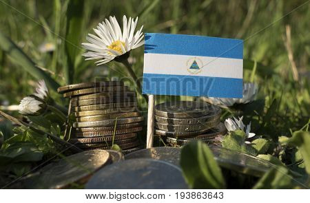 Nicaraguan Flag With Stack Of Money Coins With Grass And Flowers