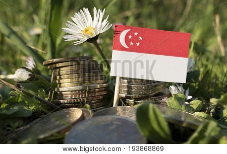 Singaporean Flag With Stack Of Money Coins With Grass And Flowers