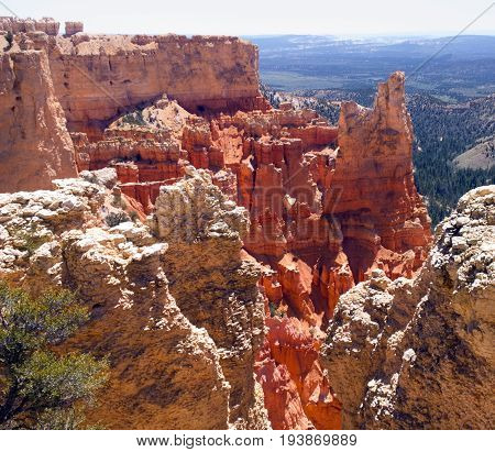 Glowing red rock formations at Paria View Bryce Canyon National Park Utah. Elevation: 8175 feet.