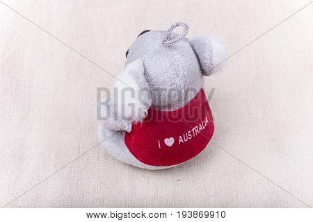 Koala soft toys on a plain canvas background