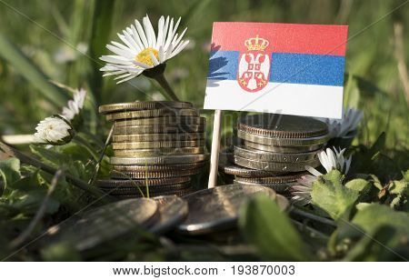 Serbian Flag With Stack Of Money Coins With Grass And Flowers